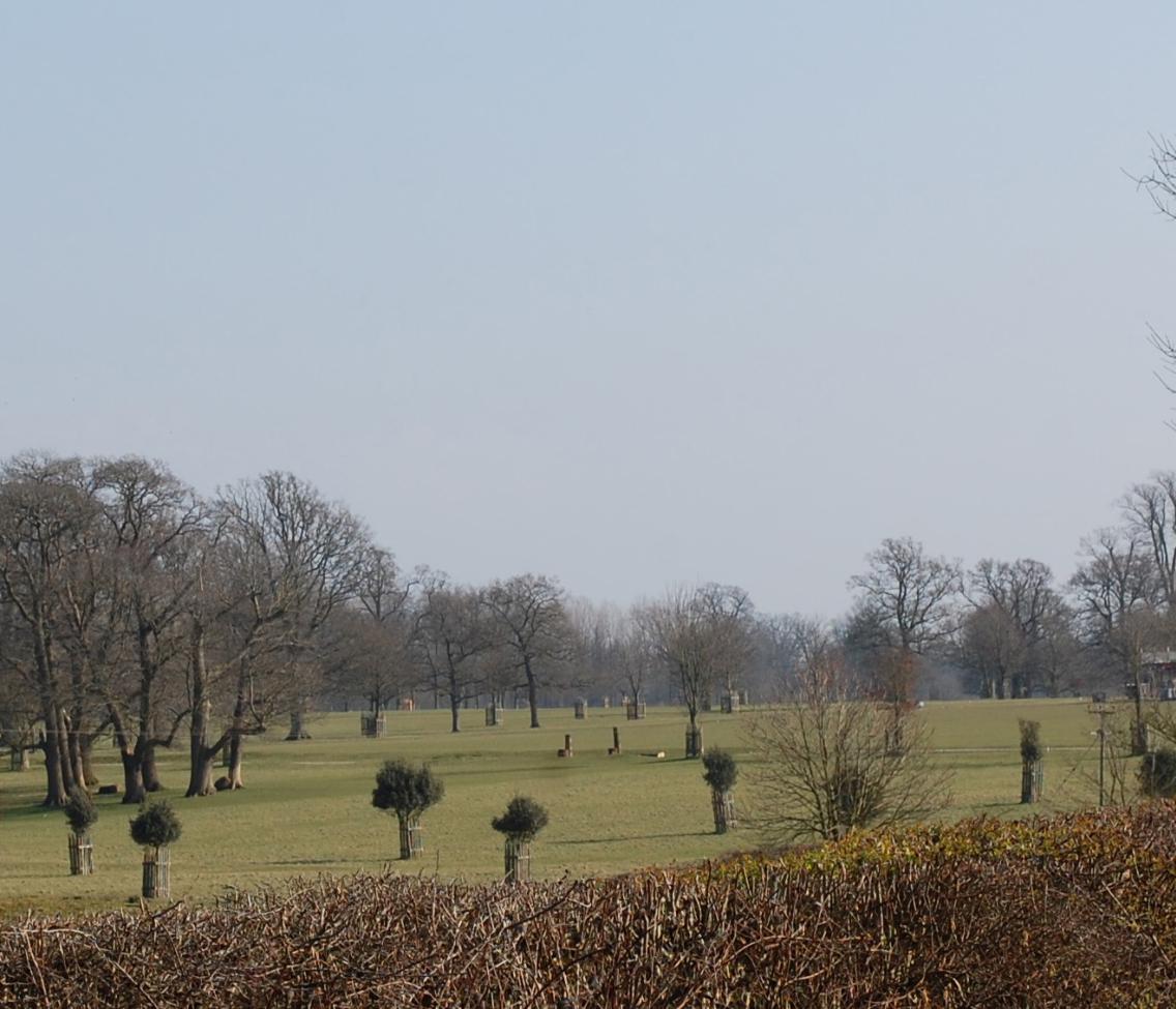 Figure 1: Views looking west from Buren's Lodge, Well Lane