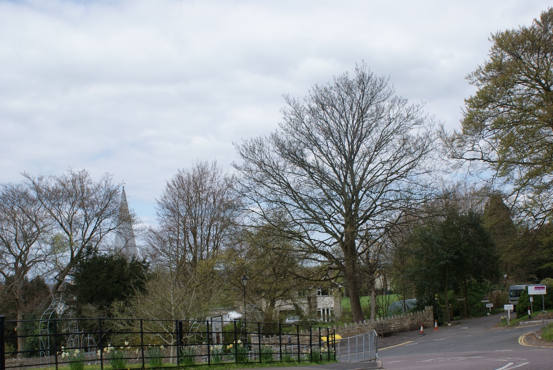 Figure 8: View from Sunday's Hill towards the forge and the spire St. Mary's Church