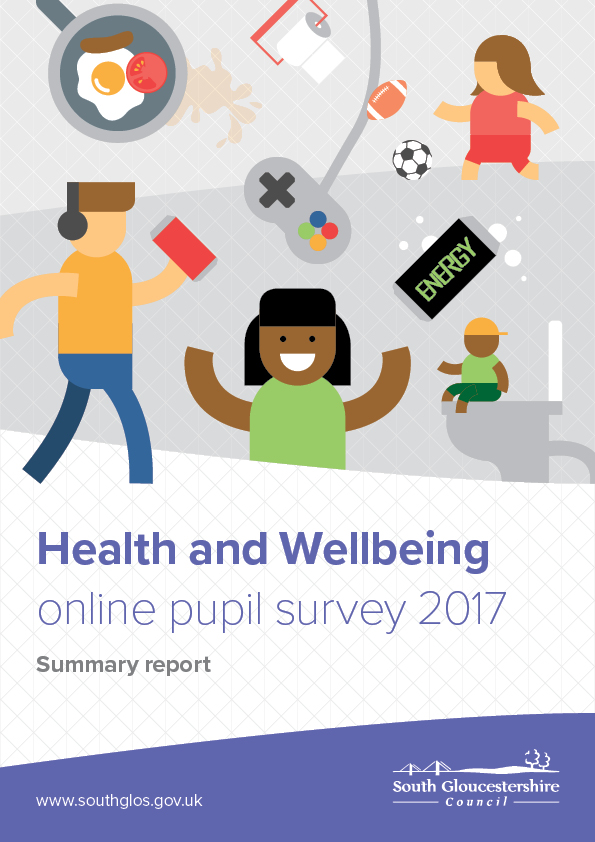Online Pupil Survey Summary Report 2017