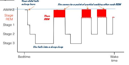 Sleep toolkit Figure 2
